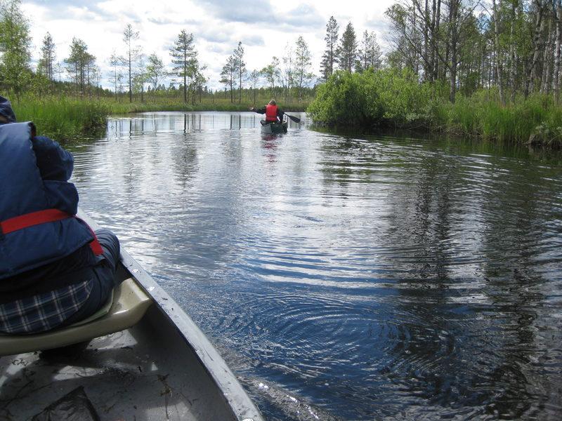 Juhannusaaton melonta Jängänjärvi-Penninkilampi 25.6.2021. Sauna ja palju.