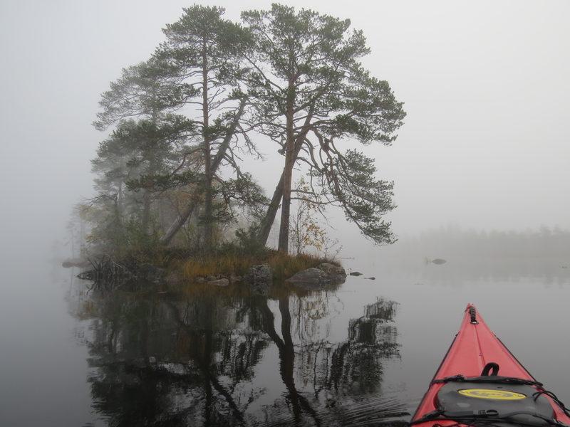 Kuva Jyri Lehtonen