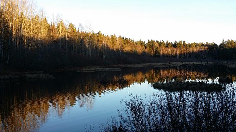 Espoon keskuspuiston Tikankierros