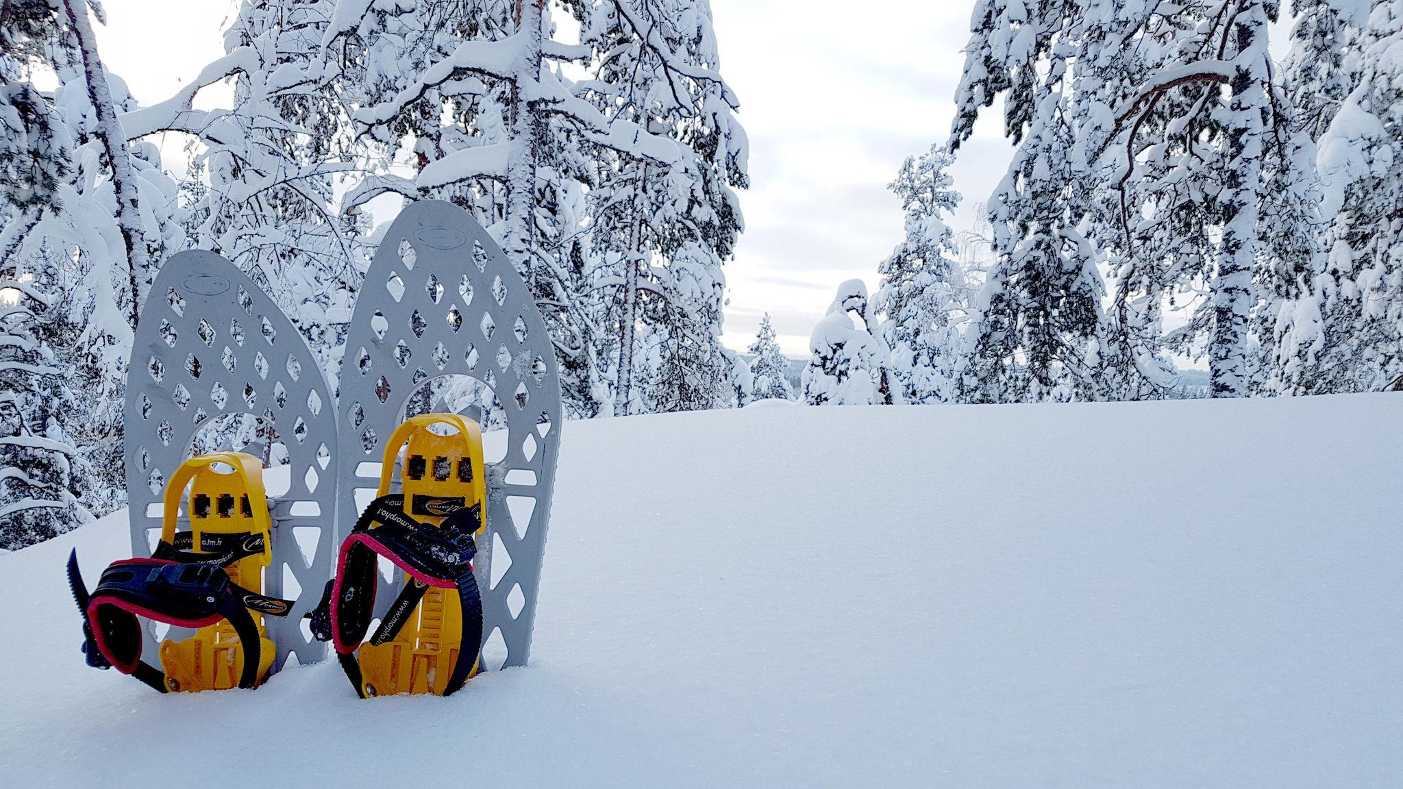 Rental Snowshoes at Repovesi