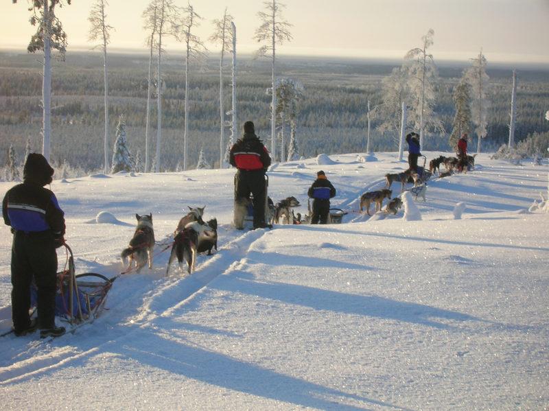 Ikimuistoinen huskysafari - Se tunne, kun kiidät läpi lumisen maiseman koiravaljakon vetämänä.