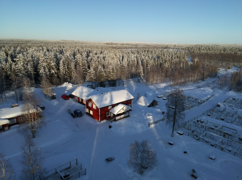 Koiratarha ja majatalo - Farmilla asustaa 90 rekioiraa valmiina viemään sinut talviseen luontoon