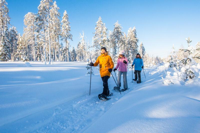 Revontulien metsästystä iltalumikenkäilyllä - Vaihtoehtoisesti voit valita lumikenkäilyn illalla laskettelupäivän ja illallisen jälkeen.