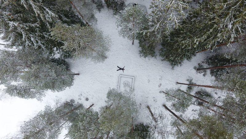 Koko päivän lumikenkäretki Liesjärven kansallispuistoon paikasta Helsinki, 7h