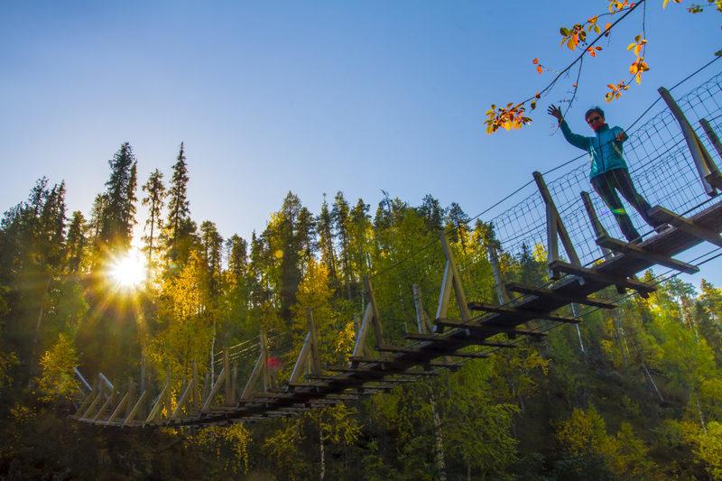 Matkalla Oulangan kansallispuistoon  - Riippusillan ylitys matkalla Oulangan kansallispuistoon.