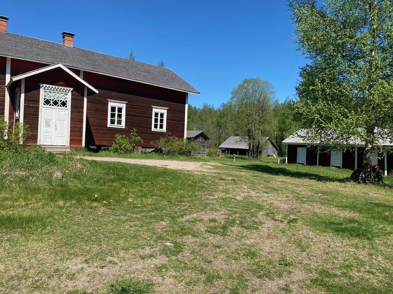 Metsäkylpy Koveron perinnetilan lähimaastossa.