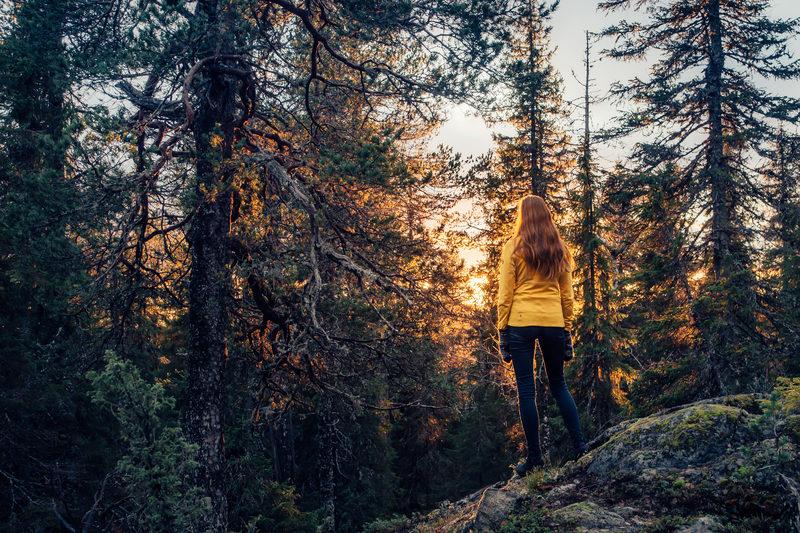 Yön yli -patikkaretki metsäkämpälle