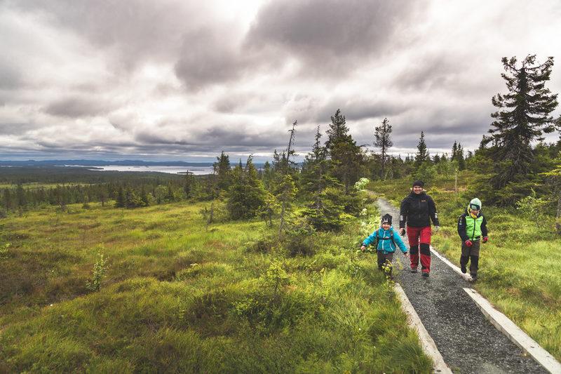Kolmen kansallispuiston perheloma