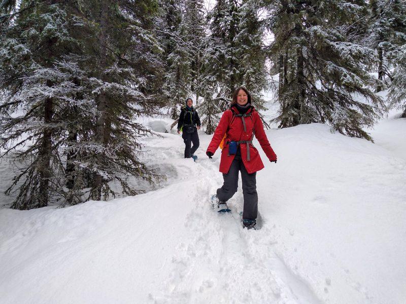 Lumikenkäretki Syötteen kansallispuistossa