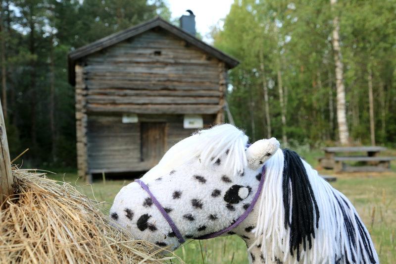 Taikapolku Levanevan pitkoksilla - Särkisen vanhassa pihapiirissä on hyvä tilaisuus pohtia elämän eväitä suoerämaan laidalla. Koko perheen retkiä Särkisen pihaniityille voidaan elävöittää vaikka ottamalla omat keppihevoset mukaan.