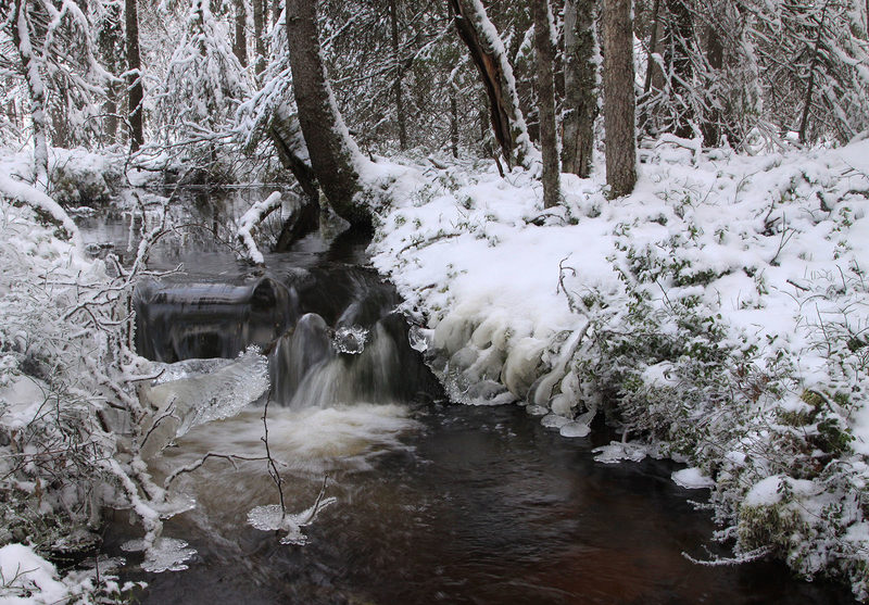 Taikapolku talviuimareiden maisemissa - Lauhanvuoren kansallispuiston lähdepurot virtaavat avoinna ympäri vuoden. Talvisilla puroilla on vahva tunnelma.