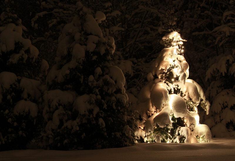 Taikapolku Kaamoksen valoissa - Kaamoksen valot sopivat vuodenvaihteen ohjelmanumeroksi, johon liittyy myös hyvä ruoka ja juoma. Lauhansarven saunat ja pitopyödät odottavat pienen matkan päässä.