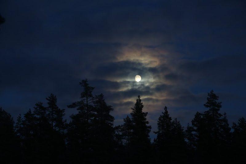 Taikapolku Kaamoksen valoissa - Talvinen hämärä ei ole pimeyttä, vaan selkeällä taivaalla kuu voi valaista  Lauhanvuoren rinteiden maiseman yllättävän valoisaksi etenkin lumiseen aikaan.