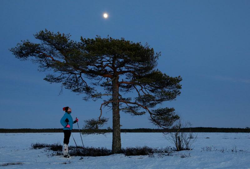 Suuret suot ja avara taivas - Geoparkin suurilta soilta löytyy monimuotoista luontoa. Soilla liikkuminen on helpointa talvella lumen kantaessa hiihtäjää tai lumikenkäilijää.