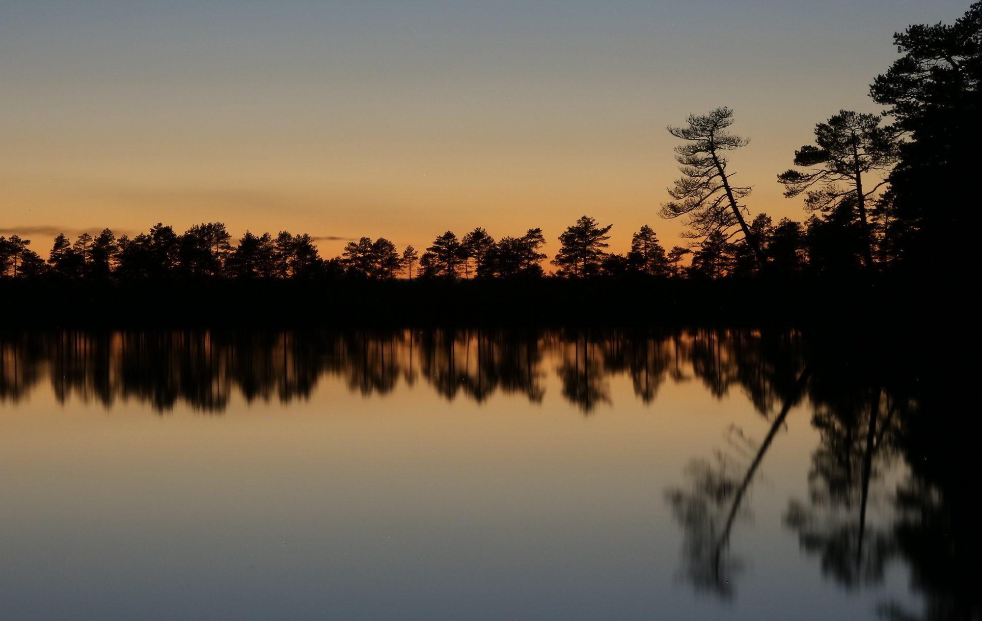 Taikapolku öisellä Kauhaneva - Auringonlasku ja jälkeiset tunnit jättävät suomaisemaan vahvan jäljen. Sää liikuttaa pilviä ja tunnelmaa.