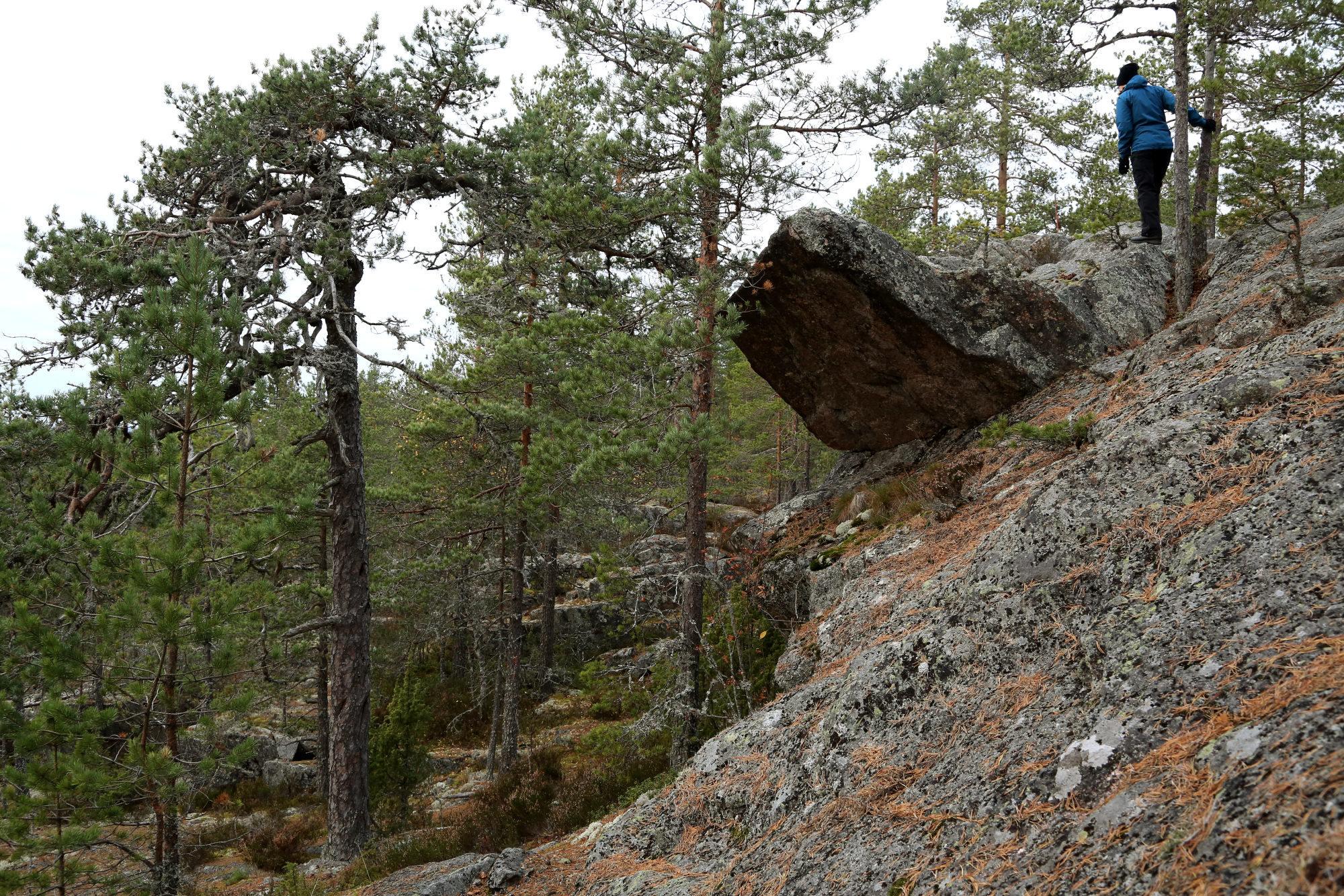 Taikapolku Pyhävuoren seinillä ja kivillä - Kristiinankaupungin Pyhävuoren jylhillä rinteillä on hienoja yksityiskohtia.