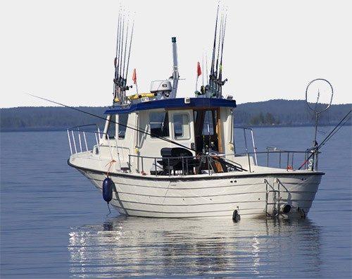 Blue Saimaa Oy - Kalastusretkiä ammattikalastajan kanssa