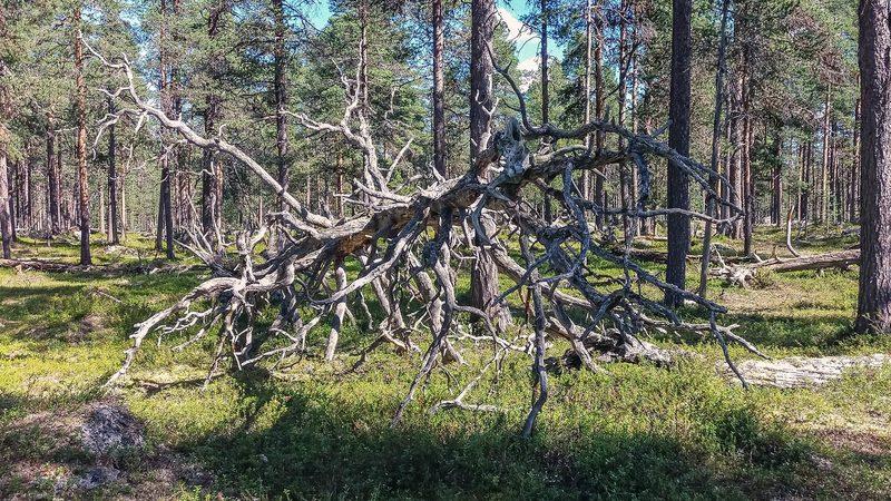 Inari Lapland, Finland