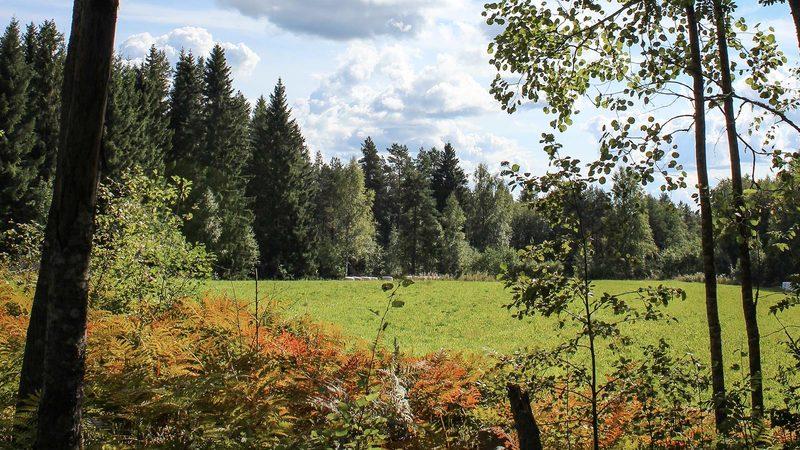 Mäntyharju-Repovesi vaellusreitti (33 km)