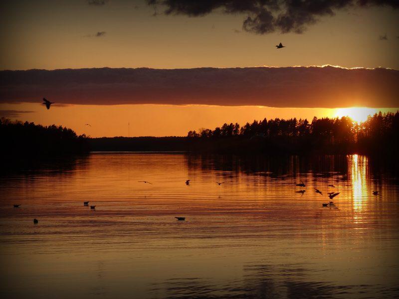 Auringonlasku - Kaunis auringonlasku väriloistoineen ja vesilinnut Aurlahdessa, jonka kännykamerakin kauniisti on tallentanut.