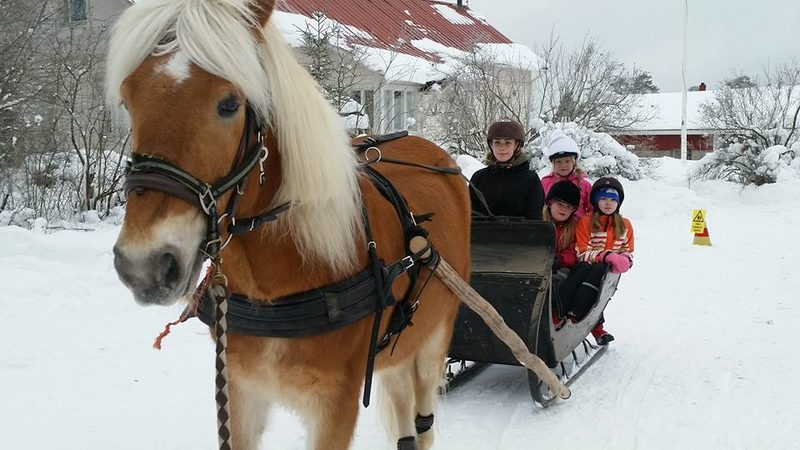 Familyholiday in the countryside, 3 nights full board