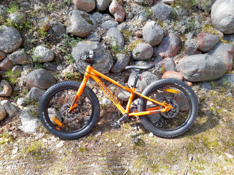 Lasten Maastopyörä Cannondale Cujo 20