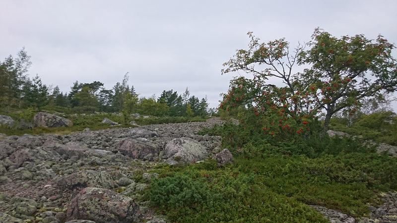 Ohtakarin luontopolku 2,1 km, Kokkola