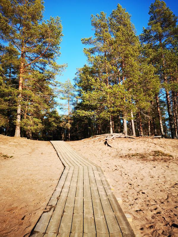 Pyöräillen Laajalahden hiekkarannoille 20 km