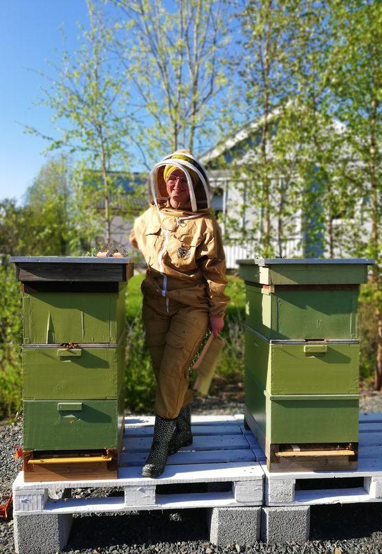 Iltapäiväteet mehiläisten kanssa, Kokkola