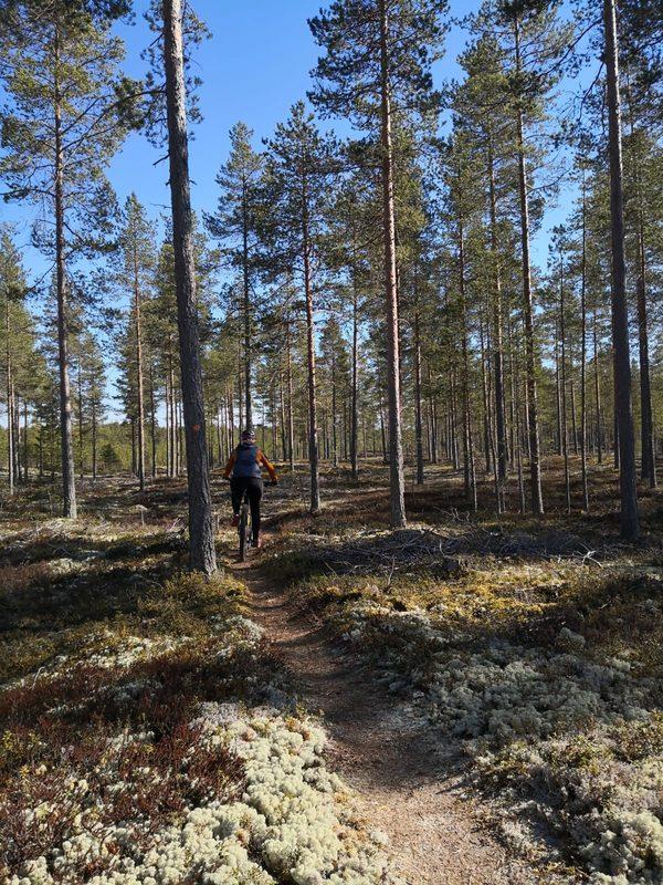 Karhi-Lohtaja maastopyöräilyreitti 12,8 km, Kokkola