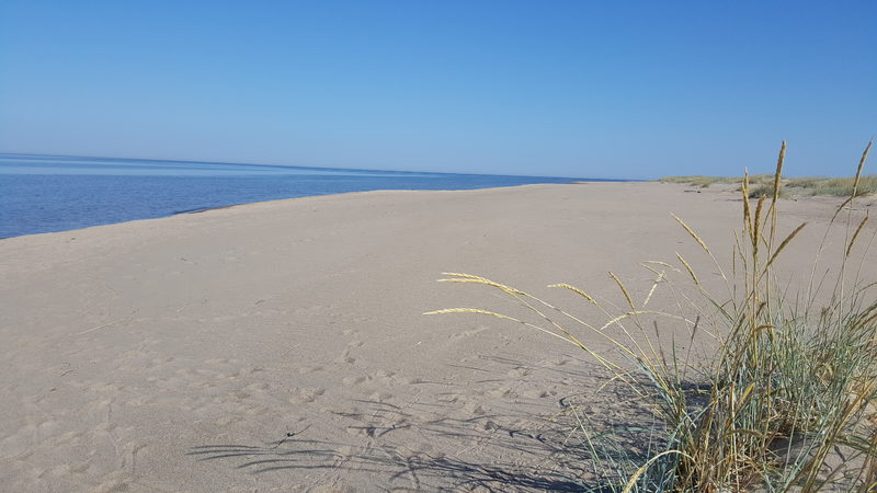 Retkibussin reitillä, Ohtakarin hiekkadyynit