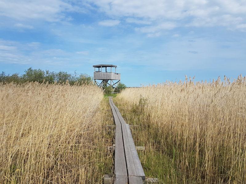 Harrbådan luontopolku 4,5 km, Kokkola