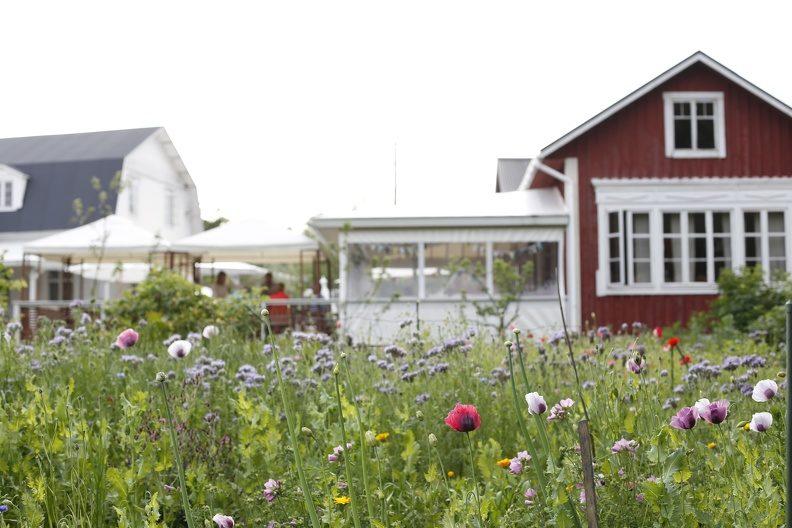 Pilots' village Högsåra