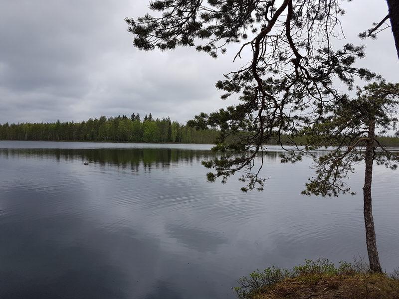 Salamajärven karun kaunis erämaa