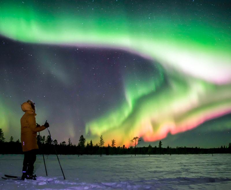 Wildmaker Lapland