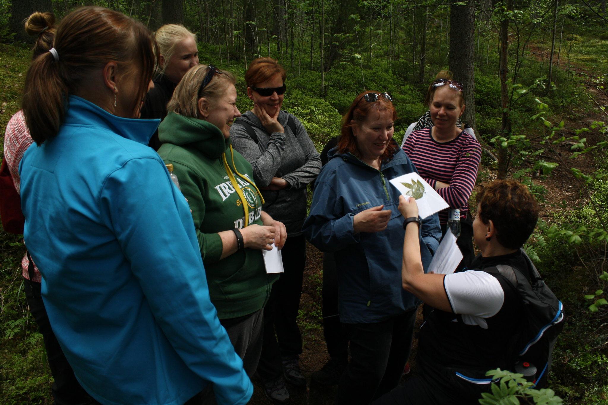 Wild Herb Tour in Hämeenlinna